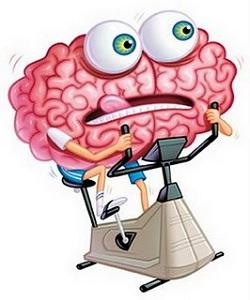 Мозг: тренируем способности